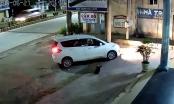 Clip: Cẩu tặc đi xế hộp, rút súng điện trộm chó ngay trước cửa nhà dân