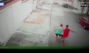 [Clip]: Rùng mình trước cảnh bé trai 4 tuổi bị Pitbull tấn công