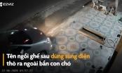 [Clip]: Phẫn nộ cảnh nhóm người đi ô tô để... trộm chó