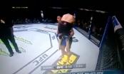 [Clip]: Võ sĩ MMA hạ gục đối thủ bằng chiêu thức cực độc