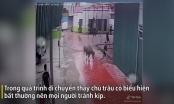Video: Kinh hoàng cảnh trâu điên đuổi húc khiến nhiều người bỏ chạy tán loạn