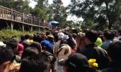 Hàng vạn người viếng mộ Đại tướng Võ Nguyên Giáp ngày đầu xuân
