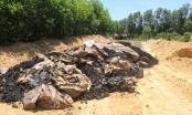 Vụ chôn chất thải Formosa trong vườn nhà Giám đốc: Đã có kết quả giám định