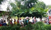 Hà Tĩnh: Phát hiện xác người đàn ông treo cổ trong ngôi nhà hoang