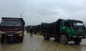 Gần 300 tấn hải sản nhiễm độc bị tiêu hủy tại Hà Tĩnh