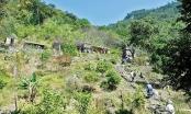 Quảng Ninh: Khoanh vùng cấm hoạt động khai thác khoáng sản
