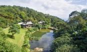 Đình chỉ nghiêm túc việc xây Resort không phép ở Vườn Quốc gia Ba Vì