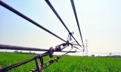 Cột điện 500 kV đổ gục bất thường: Xử lý nghiêm nhà thầu nếu vi phạm