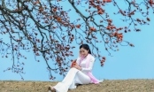 Thiếu nữ dịu dàng bên sắc hoa gạo tháng 3