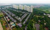 Công ty đề xuất lấp hồ Thành Công để làm nhà tái định cư là ai?