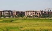 Thủ tướng Chính phủ đồng ý việc chuyển mục đích sử dụng đất tại Hưng Yên và Lào Cai