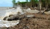 Triển khai Nghị quyết phát triển ĐBSCL thích ứng với biến đổi khí hậu