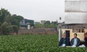 Chuyện lạ ở huyện Gia Lộc, cuốn sổ đỏ xuất hiện trên đất ao công!