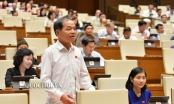 ĐBQH Lê Thanh Vân: Cần làm rõ ai đứng sau hành vi giả người ăn xin ở Hội An