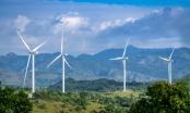 Tỉnh Ninh Thuận cấp chủ trương đầu tư cho 7 dự án điện gió nhưng chưa được Bộ Công thương đồng ý