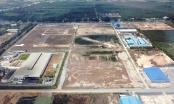 Công ty Hồng Đạt - Long An chuyển nhượng trái phép 2.500 lô đất
