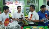 Huyện Hiệp Hoà ra mắt website truy xuất nguồn gốc sản phẩm nông nghiệp