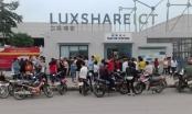 Công ty TNHH Luxshare-ICT doanh thu hơn 33 nghìn tỷ đồng