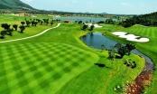 Mở lại sân golf ở Vĩnh Phúc, phục vụ không quá 50% công suất
