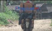 """Kỳ 1 - Lâm tặc ngang nhiên hút máu rừng tại Bắc Kạn: Lần mò đường dây lâm tặc """"ăn"""" gỗ nghiến trái phép mang đi tiêu thụ"""