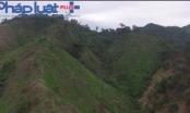 Tuyên Quang: Nhiều đối tượng đốt phá rừng bị xử lý