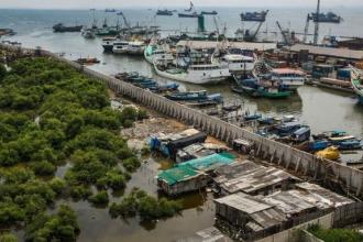Jakarta đang chìm dần xuống nước