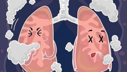 Pháp Luật Plus - phổi bị tổn thương - các bài viết về phổi bị tổn thương,  tin tức phổi bị tổn thương
