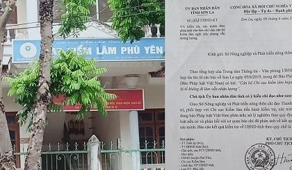 UBND tỉnh Sơn La yêu cầu làm rõ vụ cán bộ Hạt kiểm lâm huyện Phù Yên không đi làm vẫn nhận lương