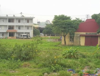 """Vụ đất chuyển nhượng hợp pháp nhưng bị lấn chiếm: UBND huyện Quốc Oai đang """"loay hoay"""" tìm cách xử lý?"""