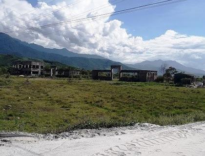 Thừa Thiên - Huế: Thu hồi hàng trăm ha đất chỉ để cỏ hoang cỏ dại?