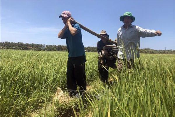 """Điểm báo ngày 23/7/2019: """"Vét"""" từng giọt nước chống hạn hán"""