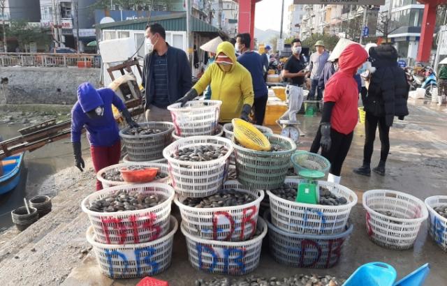 Video: Cận cảnh cuộc sống của người dân huyện Vân Đồn sau những ngày dỡ lệnh phong tỏa