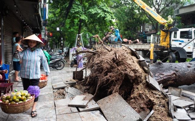 Hà Nội: Nhiều tuyến phố ngập úng, cây lớn đổ ngang đường