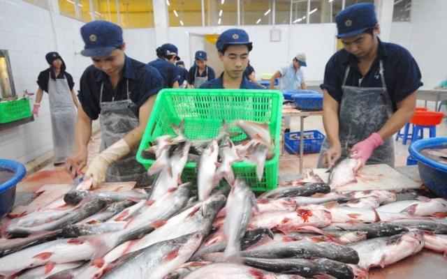Slide - Điểm tin thị trường: Xuất khẩu cá tra sang Mỹ 'lao dốc' sau 8 tháng