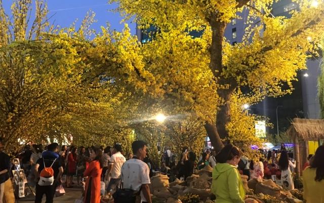 Lung linh Lễ hội Xuân tại Nhà văn hóa Thanh niên