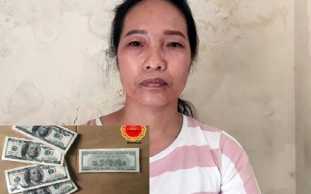 Hà Nội: Tạm giữ hình sự nữ giúp việc trộm 5.000 USD