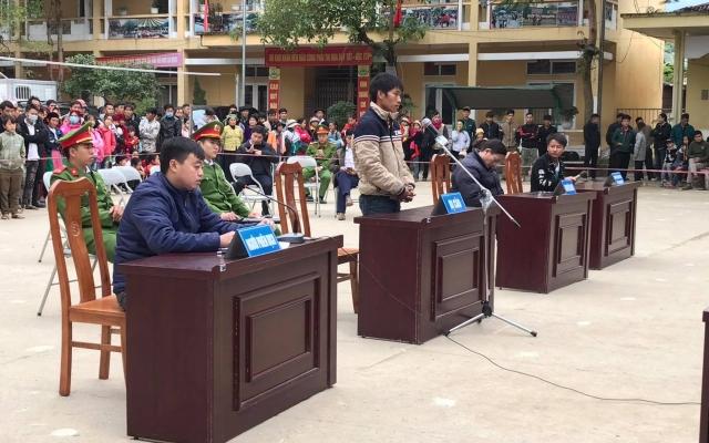 Hà Giang: Lĩnh 15 tháng tù vì chặt một cây nghiến rừng