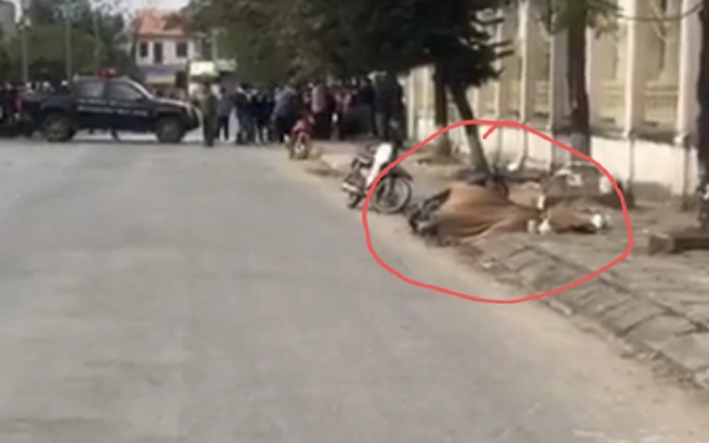 Hà Nội: Tập trung truy bắt nghi phạm giết người giữa phố