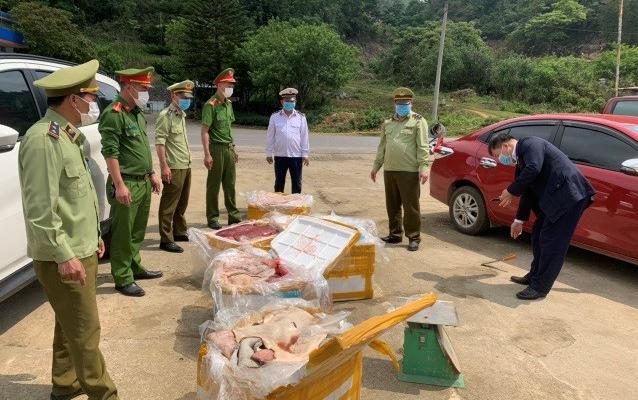 Sơn La: Thu giữ, tiêu hủy gần 500kg nội tạng động vật không rõ nguồn gốc