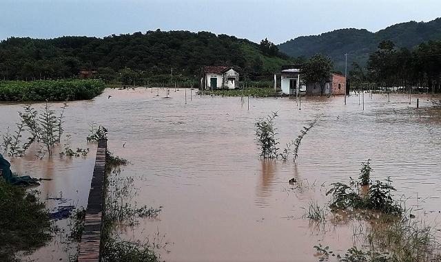 Thiên tai năm 2020, Lâm Đồng thiệt hại khoảng 100 tỷ đồng và 5 người thiệt mạng