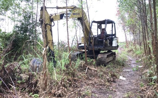Cần sớm xử lý các đối tượng ngang nhiên đưa máy múc đào 18 cây Bằng Lăng ở Đắk Lắk