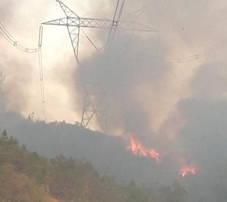 Nắng nóng gây cháy rừng tại Huế ảnh hưởng đến đường dây 500kV
