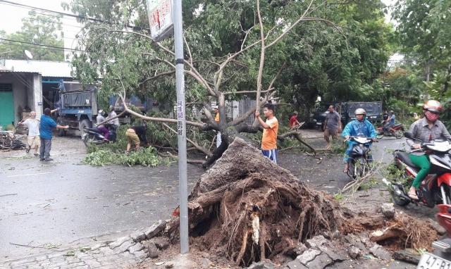 Đà Nẵng: Chuẩn bị các phương án ứng phó với áp thấp nhiệt đới trên biển Đông