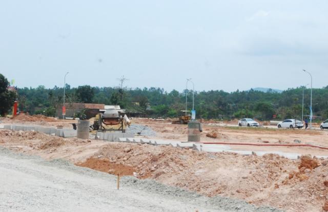 Quảng Ngãi thành lập Hội đồng thẩm định quy hoạch, kế hoạch sử dụng đất