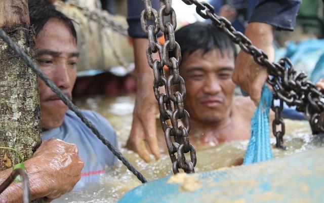 Hình ảnh xúc động: Hàng trăm người dân trằm mình cứu lúa