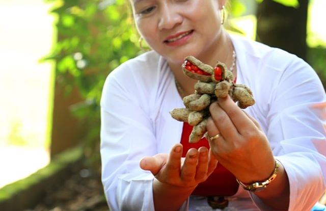 Hòa Bình: Thứ hạt đỏ bán đắt như vàng đã xuất khẩu sang Tây