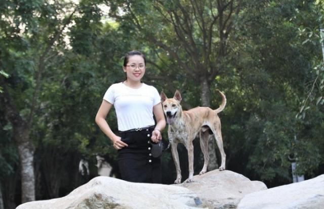 Chú chó Phú Quốc thuần chủng đắt nhất Việt Nam từ trước đến nay