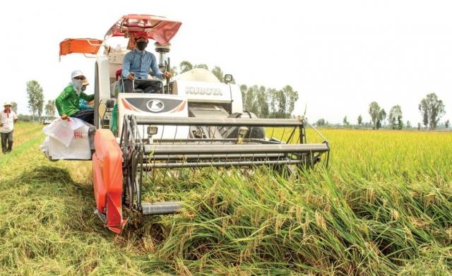 Nông nghiệp tiếp tục khẳng định trụ đỡ nền kinh tế