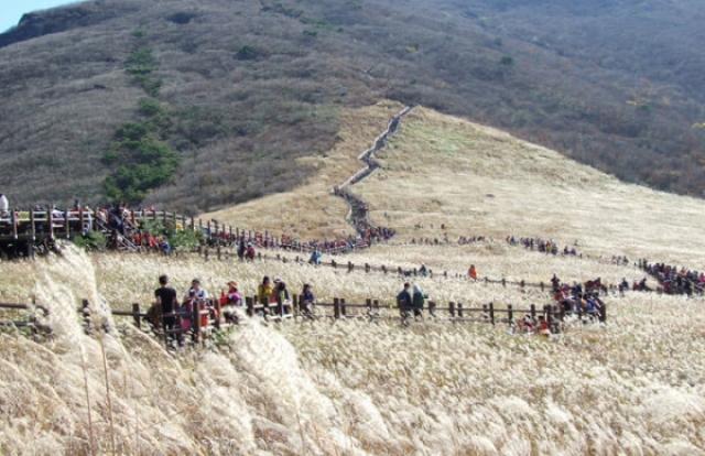 10 địa điểm Ulsan nên ghé thăm khi đến Hàn Quốc