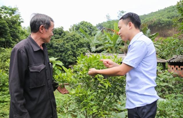 Tinh gọn tổ chức bộ máy hiệu lực, hiệu quả - Điểm sáng của Quảng Ninh